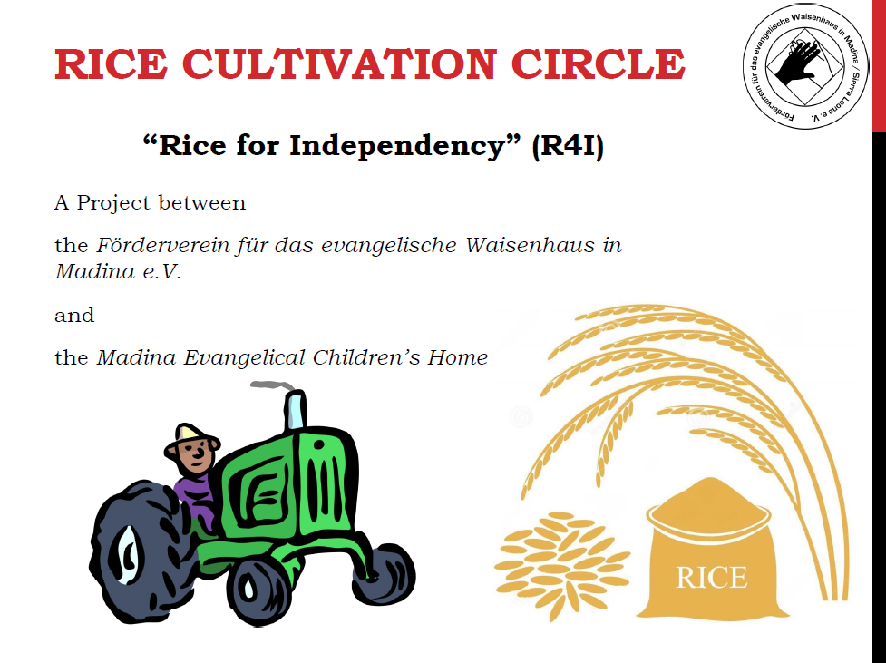 Rice for Indenpendency